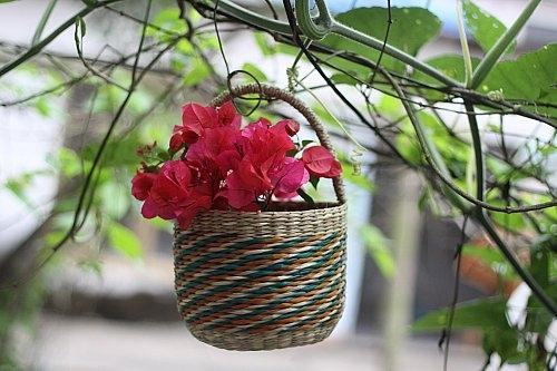 Bình hoa, giỏ hoa